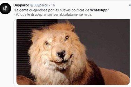 WhatsApp y los memes que desataron sus nuevos términos y condiciones I32F3OSIP5H7LAMTFVXQBQRSMI