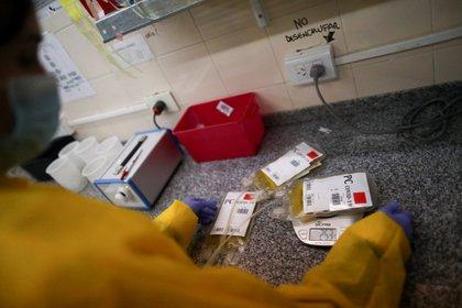 Una enfermera cataloga un plasma donado en La Plata - REUTERS/Agustin Marcarian