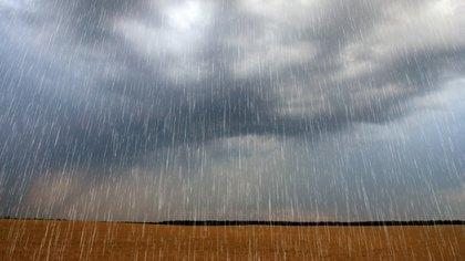 Una vía es recolectar agua pluvial que puede proporcionar una fuente alternativa que compense la demanda de este recurso dulce. El agua de lluvia puede emplearse en el riego de jardines y la limpieza doméstica (Shutterstock)