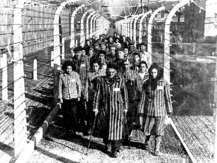 Ya no son 6 millones de muertos en el holocausto judio, ¡AHORA SON 20 MILLONES!