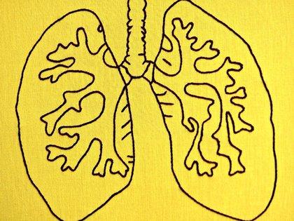 Según los médicos, le deañó ambos pulmones (Foto: FLICKR/HEY PAUL STUDIOS)