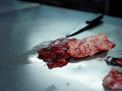 Los órganos del fugu concentran el veneno, por lo que deben ser descartados con mucho cuidado para preservar la carne (REUTERS/Sakura Murakami)