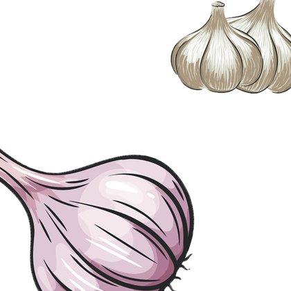 El ajo tiene cierto efecto en la reducción del denominado colesterol malo o LDL-c y de los triglicéridos sanguíneos