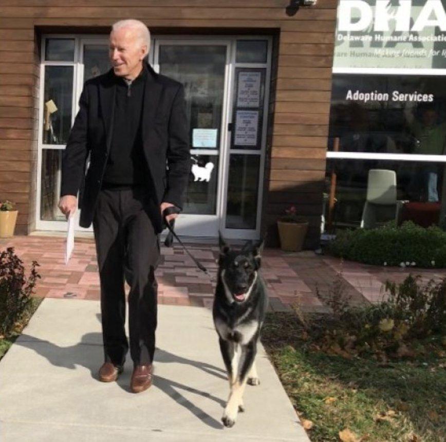 Joe Biden con su mascota rescatada Major.