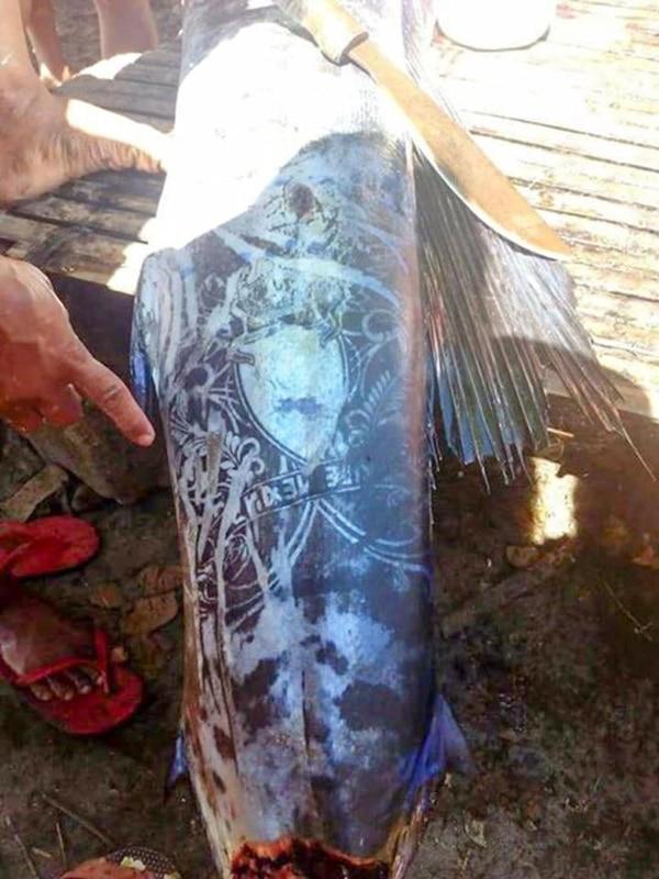 El Misterio del Pez Tatuado