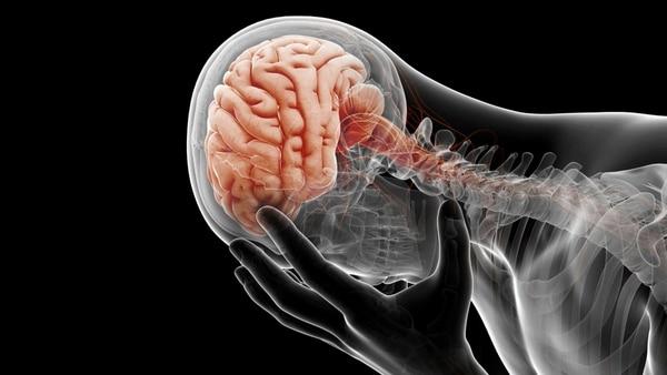 Los investigadores descubrieron que durante el transcurso de la vida de una persona, alrededor de 14 de cada 100 mil padecen encefalitis autoinmunitaria