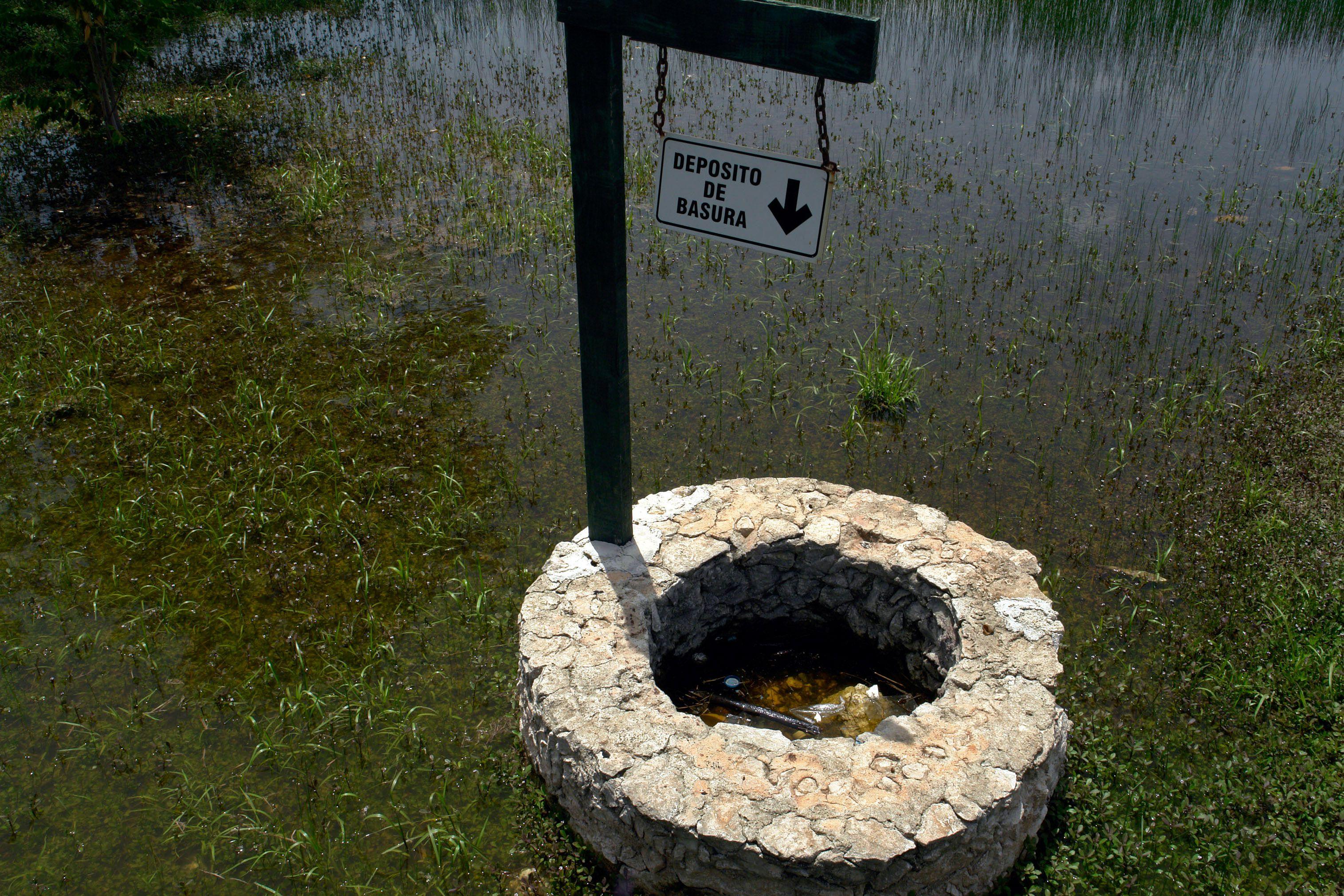 MERIDA, YUCATAN, 23JULIO2010.- Personal de sanidad, realiz— acciones de limpieza en terrenos bald'os, calles  y parques para retirar la maleza y chatarra que provoca la acumulaci—n de agua y basura que sirve como criadero de moscos, lo cual esta afectando a los yucatecos ya que se presentan m‡s de 600 casos de dengue en el estado FOTO: FRANCISCO BALDERAS/CUARTOSCURO.COM