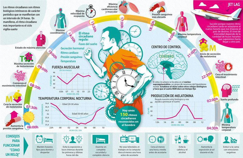 Los ciclos circadianosson importantes para todas las cosas que hacemos durante el día. (Fotografía: Sportlife)