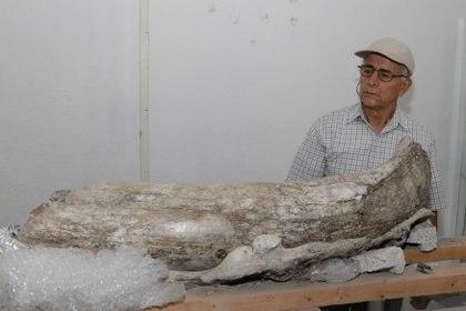 Uno de los descubridores aseguró que algunos habitantes locales se llevaron algunas piezas a sus casas (Foto: Mireya Novo/ Cuartoscuro)