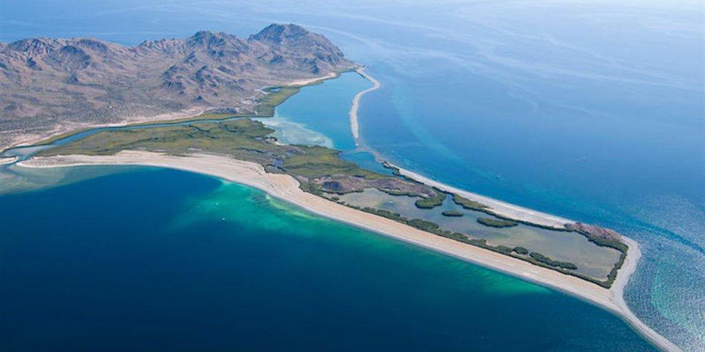 Un paraíso: así es la isla de Baja California Sur que fue comprada con  criptomonedas - Infobae