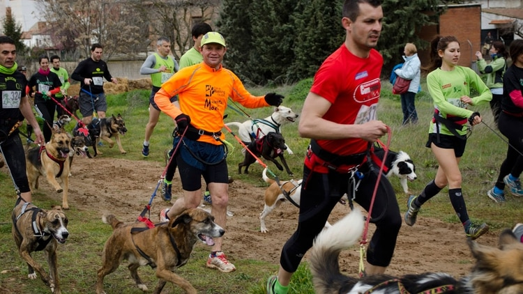 <b>Canicross:</b>se corre con un perro amarrado a la cintura runningchapi.blogspot.com 163