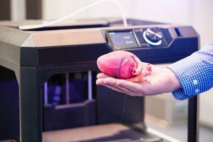 Uno de los desarrollos de Fundación Pablo Cassará consiste en la bioimpresión 3D (Shutterstock)