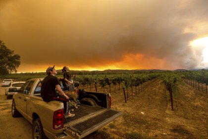 ARCHIVO - En esta imagen de archivo del 20 de agosto de 2020, Thomas Henney, a la derecha, y Charles Chavira observan cómo se extiende el humo sobre Healdsburg, California, mientras arden varios focos de incendios. El humo de los incendios forestales en la Costa Oeste de Estados Unidos ha impregnado las uvas en algunas de las zonas vinícolas más apreciadas del país con un sabor a ceniza que podría suponer un desastre para la añada de 2020. (AP Foto/Noah Berger, Archivo)