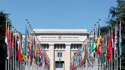 La Comisión de DDJJ de la ONU ordenó el informe de Determinación de los Hechos