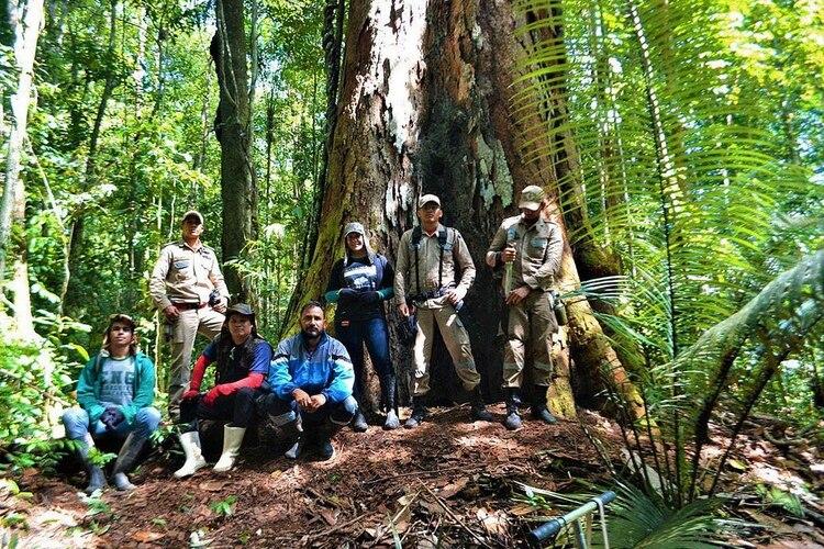 Un grupo de guarda parques posa junto al árbol.