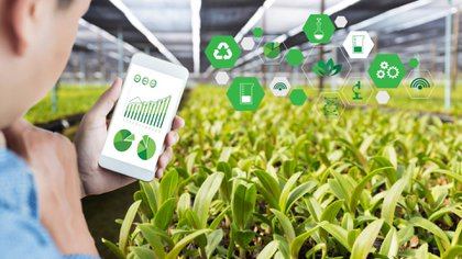 They present a technology that allows detecting diseases in crops
