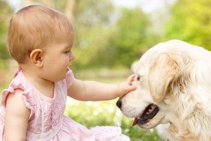 Un bebé se encuentra al mismo nivel de empatía que un perro cachorro (iStock)