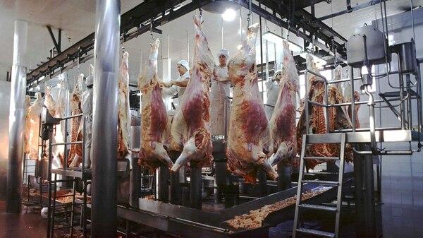 Desde el 2014 hasta la fecha, la producción y oferta de las carnes en su conjunto crecieron en 1 millón de toneladas y permitirán un consumo por habitante y año de más de 120 kilogramos
