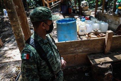 Un miembro del Ejército muestra el campamento y laboratorio clandestino que el Ejército Mexicano destruyó junto a cuatro hectáreas de plantas de coca, hoy en el municipio de Atoyac de Álvarez, en la sierra del estado de Guerrero (México). EFE/David Guzmán
