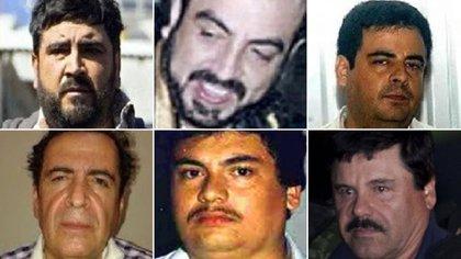 """Los cuatro hermanos Beltrán Leyva, """"El Guano"""" Guzmán y """"El Chapo"""" (Foto: especial)"""