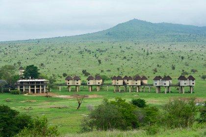Sarova Salt Lick Lodge (Taita Hills, Kenia). Inmerso en el medio del espectacular Santuario de Vida Silvestre de Taita Hills, permite apreciar a los animales en su entorno natural