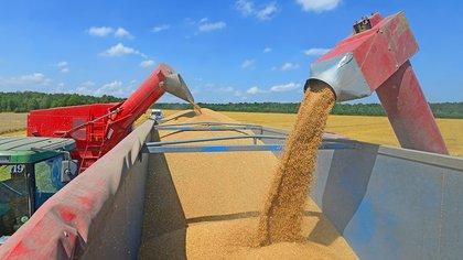 En los inicios de la cosecha de maíz y soja, hay comunas del sur de Santa Fe que impiden que los camiones lleguen  al puerto de Timbúes