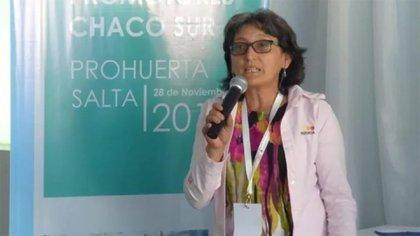 Alcira Figueroa asumiría la banca que dejó Ameri
