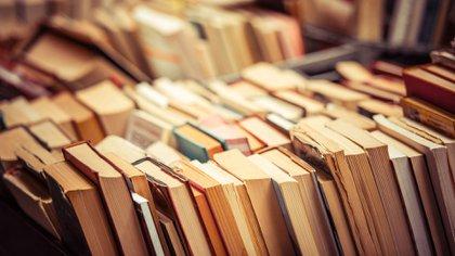 Cómo se forma un editor literario (Foto: Shutterstock)