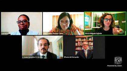 Video conferencia de los investigadores que participaron en el descubrimiento (Foto: UNAM)