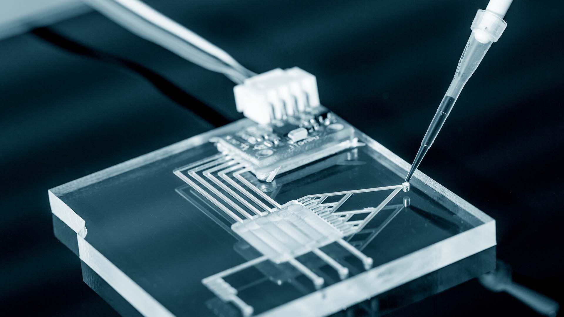 La nanotecnología es una de las actividades alcanzadas