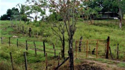 Muchas fincas del Zulia han sido desalojadas por grupos irregulares