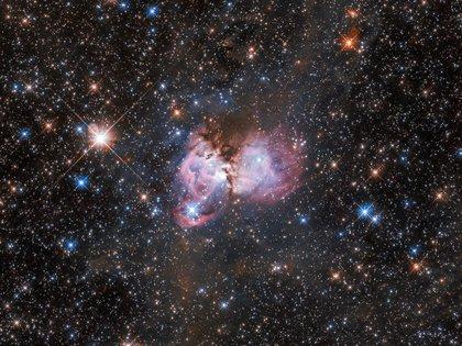 Esta escena de creación estelar, capturada por el Telescopio Espacial Hubble, se encuentra cerca de las afueras de la famosa Nebulosa de la Tarántula, la mayor guardería estelar conocida en el universo local