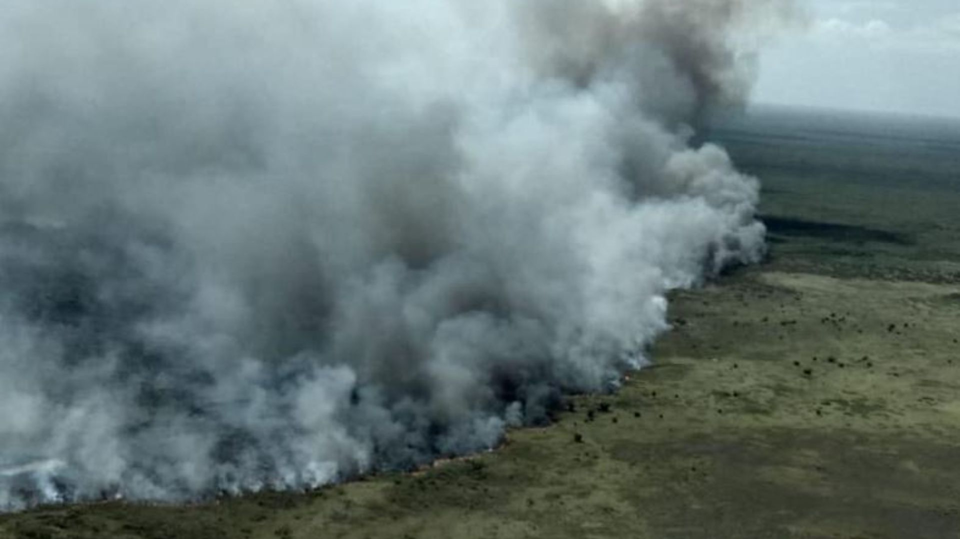 Dos incendios han afectado parte de la biosfera de Sian Ka'an (Foto: @CONANP_mx)