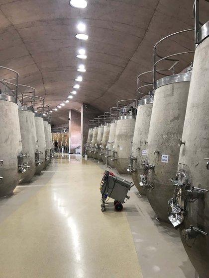 Vasijas de concreto con forma de copa sin pie