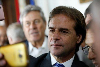 Luis Lacalle Pou, presidente electo de Uruguay, probablemente estará más cerca de Bolsonaro que de Fernández en las discusiones sobre el futuro del Mercosur (REUTERS/Mariana Greif)