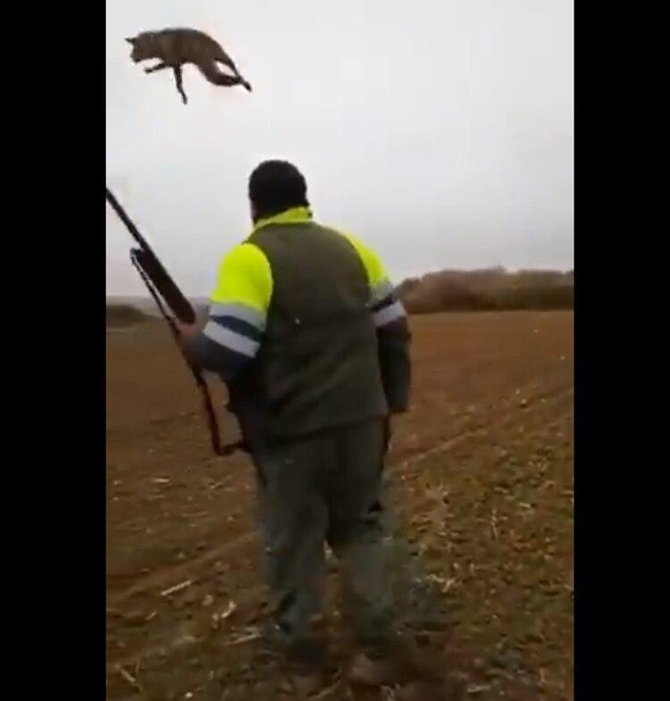 Cazador tortura a un zorrito hasta matarlo