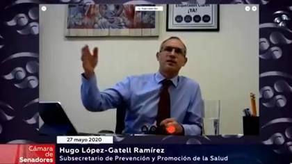 López-Gatell compareció de manera remota ante la Jucopo del Senado (Foto: Captura de pantalla Twitter @HLGatell)