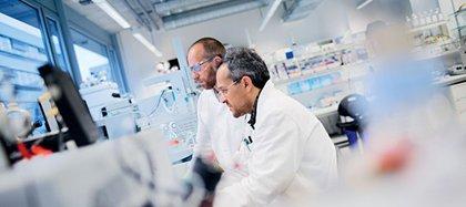 Las expectativas sobre la próxima llegada de una vacuna Covid-19 han tenido un efecto positivo en los mercados (Europa Press)