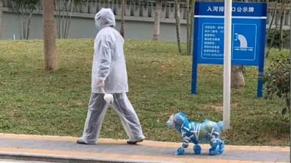 Dueños de mascotas en China protegen a sus mascotas con trajes especiales o con cubrebocas (Foto: Twitter@kylecmatthews)