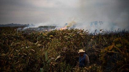 Un agricultor trabaja para intentar combatir los incendios, cerca de autopista Trans-Pantanal