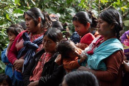 La disputa ha forzado que la población se refugie en montañas de la zona (Foto: EFE)