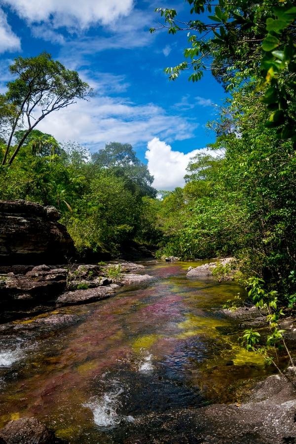 """Colombia suspendió el acceso al """"río más bello del mundo"""""""
