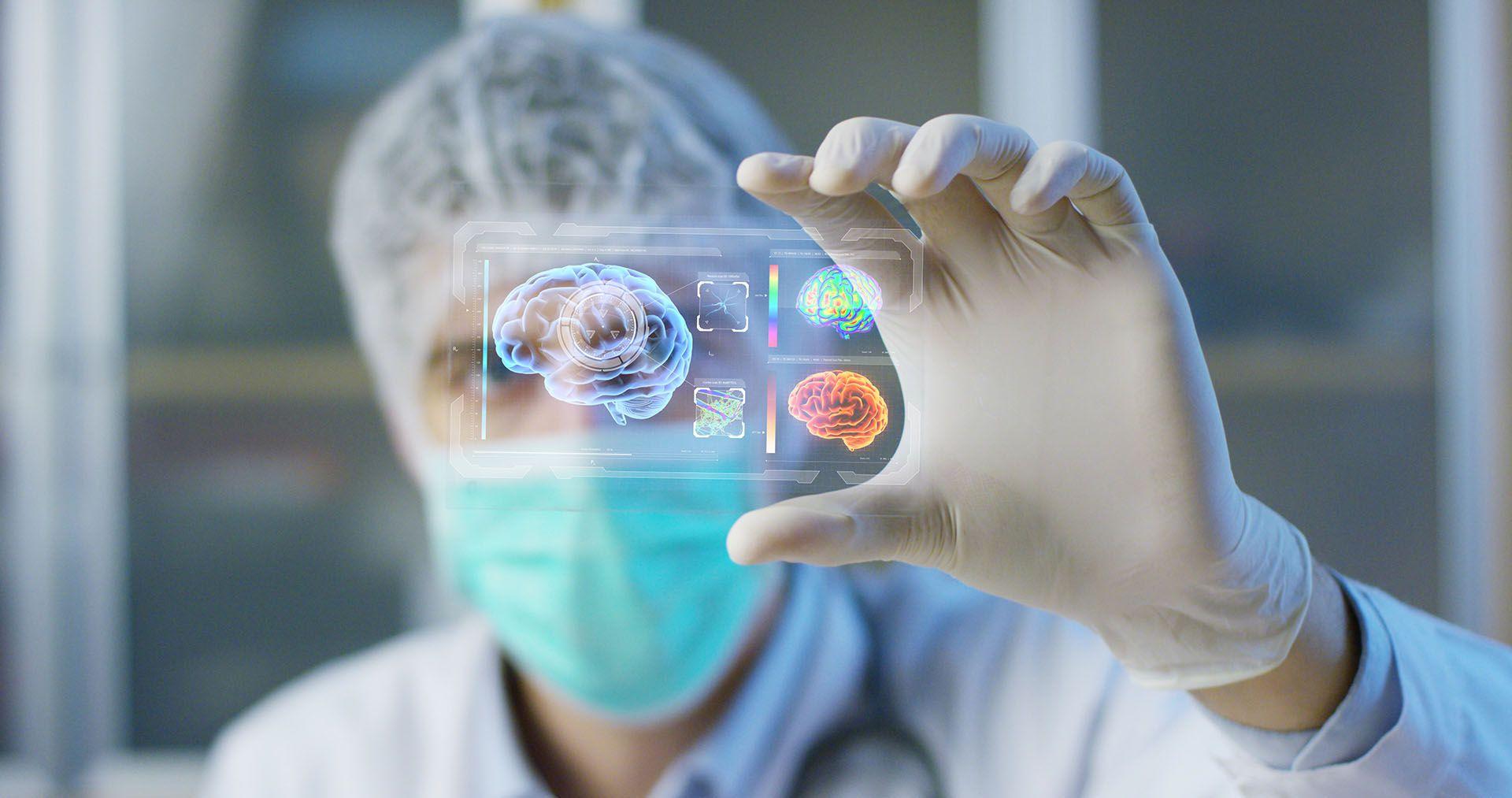 La disciplina elegida para esta edición fue la Neurociencia Experimental (Shutterstock)