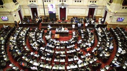 Diputados debatirá este jueves el proyecto de Interrupción Voluntaria del Embarazo (Foto: Raul Ferrari/amb)