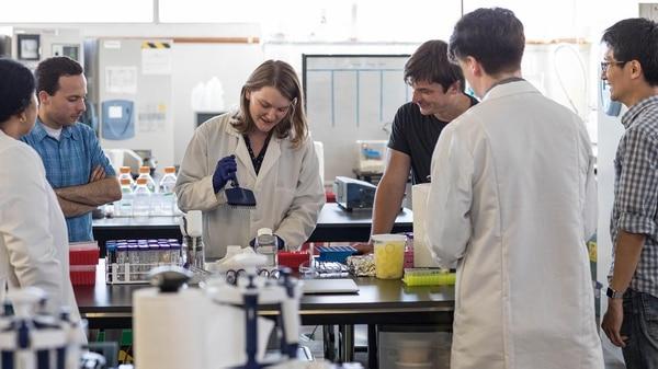 Cargill, Tyson Foods, Bill Gates y Richard Branson han invertido en latecnologíade carnein vitro.