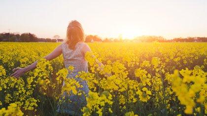 La concentración, la creatividad y la mente se benefician en armonía con la naturaleza (iStock)