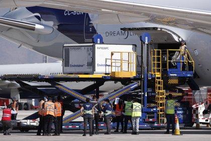 Trabajadores descargan las casi dos millones de vacunas chinas Sinovac, en el aeropuerto de Santiago (EFE/ Alberto Valdés)