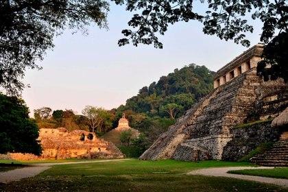 El proyecto del Tren Maya tendrá afectaciones en 10 ANP, entre ellas: Balam Kin y Balam Kú (Campeche); el Parque Nacional de Palenque (Chiapas); Yum Balam, Manglares de Nichupté y Uaymil (Quintana Roo)./INAH/Handout/Archivo