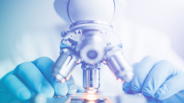 España tiene un papel relevante en el programa de desarrollo de remdesivir, ya que participa en dos ensayos clínicos que se realizan en 13 hospitales de ese país (Shutterstock)
