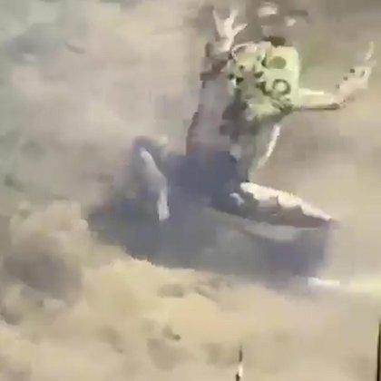 La paz y tranquilidad de la famosa terminó en tan sólo unos segundos y después de que en escena apareció una rana. (Foto: captura de pantalla)
